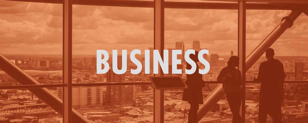 business categoria netcomm academy webinar